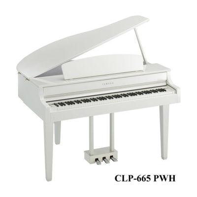CLP-665pwh