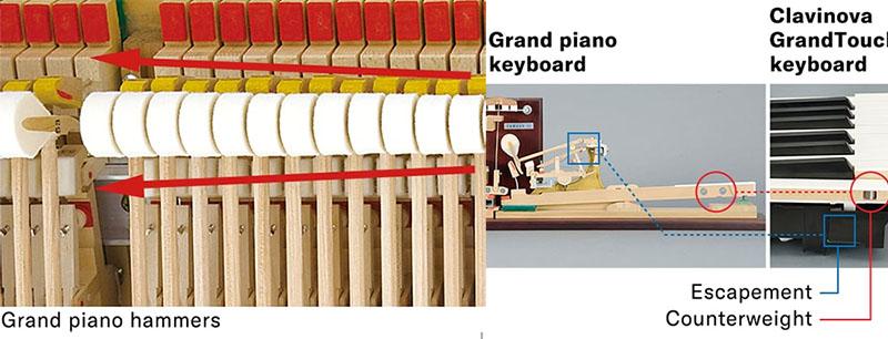 Yamaha CLP-785 Piano Action